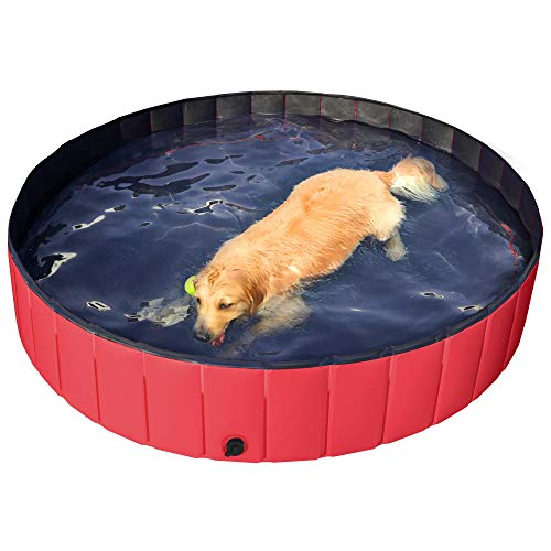 dog laying in red Yaheetech foldable pool