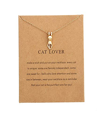 kitty hanging on chain with paws pendant