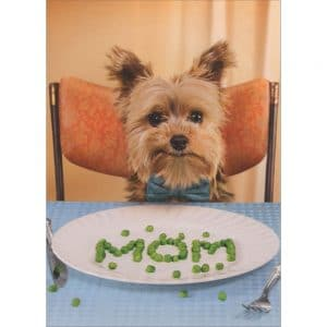 "dog spells ""Mom"" cover of Mother's Day Card"