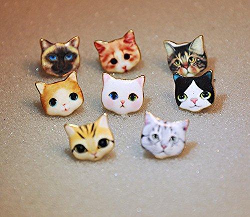 cat faces different breeds