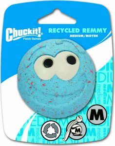 Chuckit! Recycled Remmy Ball Dog Toy