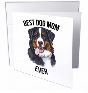 Best Bernese Mountain Dog Mom Ever