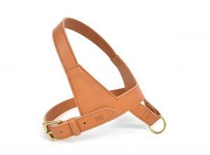 Tyrol Apple vegan leather eco-friendly harness