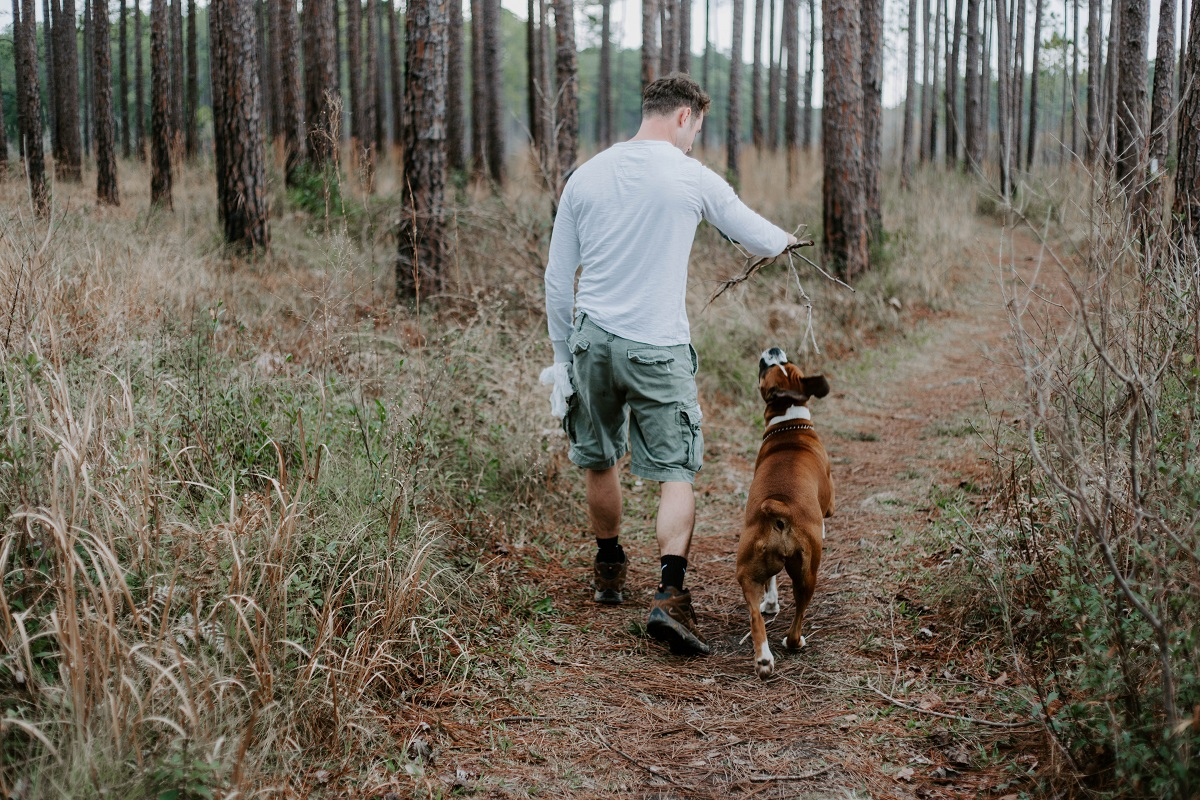 A man and dog walking along a trail in the woods.