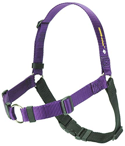 purple Sense-ation no-pull dog harness