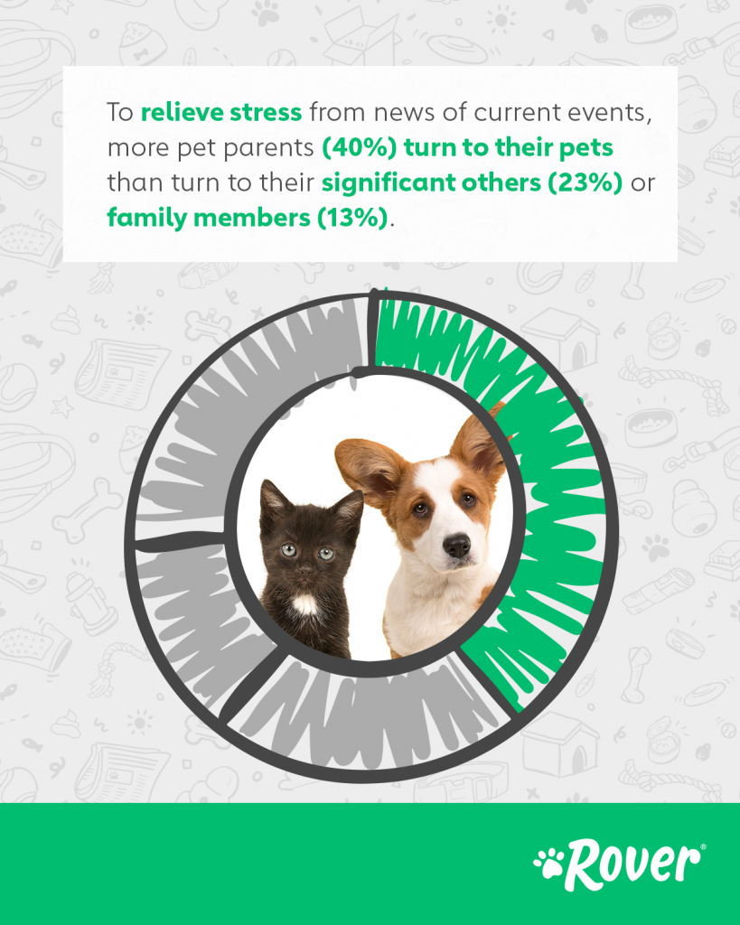Emotional benefit of pets
