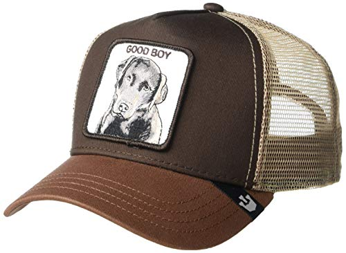 brown trucker hat with dog patch on front
