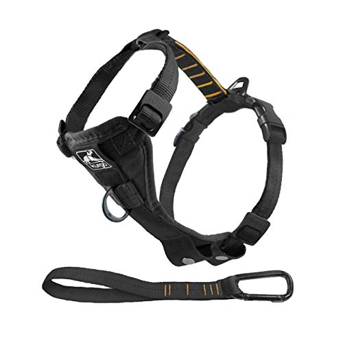black Kurgo no-pull dog harness
