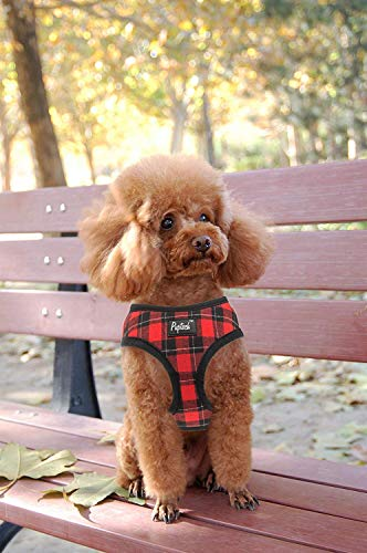 small dog in red and black plaid Pupteck soft mesh harness