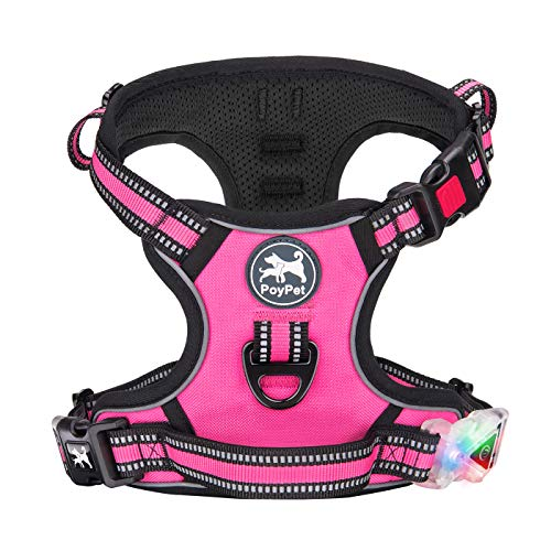 pink PoyPet harness