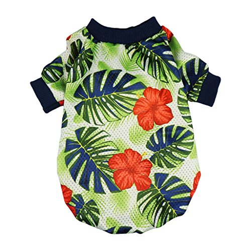Amazon Fitwarm palm leaf summer dog top