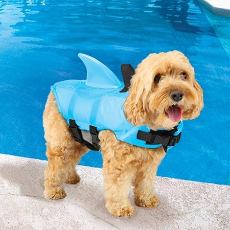 dog in SwimWays shark fin life jacket