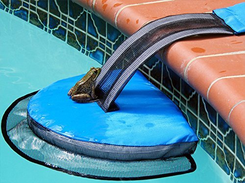 Amazon FrogLog animal ramp