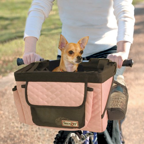 Chihuahua riding on front of bike in pink Snoozer basket