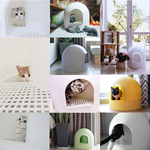 collage of cats in Pidan dome cat litter enclosures