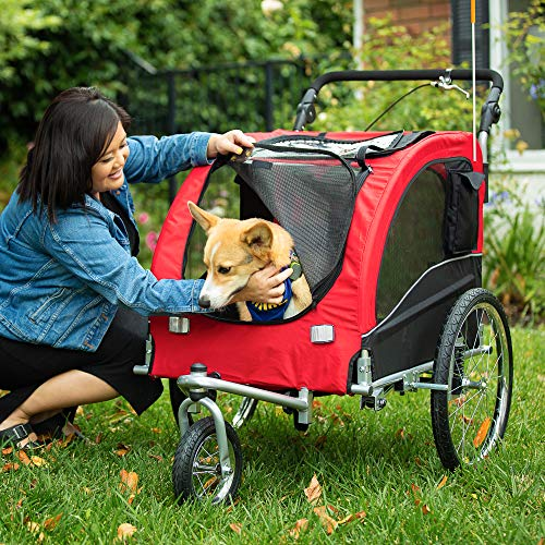 woman with her pup in a red 2-in-1 stroller/bike trailer