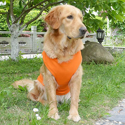 Amazon Lovelonglong ribbed tank summer dog top