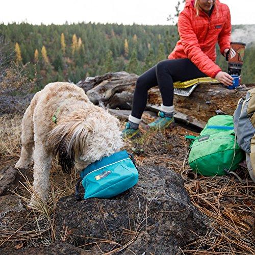 dog with head in teal Ruffwear bowl, human sitting on log nearby