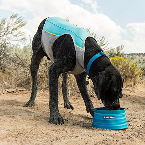 dog wearing blue and gray Ruffwear jet stream dog cooling vest