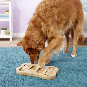 dog playing with Ethical Pet seek-a-treat shuffle bone puzzle game