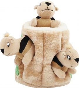 Chewy Outward Hound hide a squirrel squeaky plush puppy puzzle toy