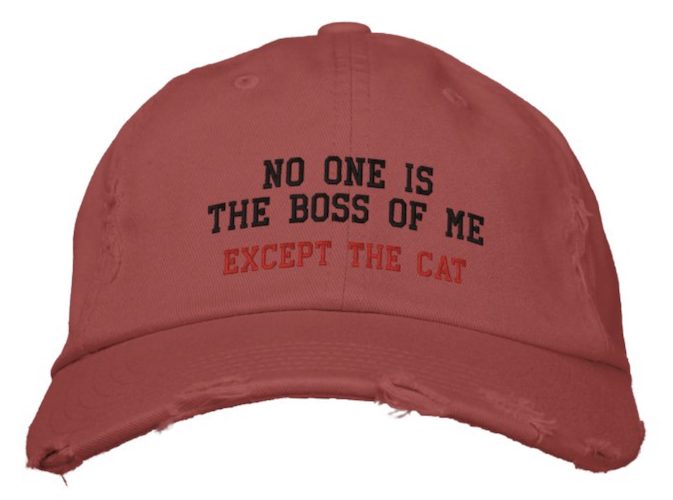 "red distressed cap with ""No one is the boss of me, except the cat"" embroidered script"