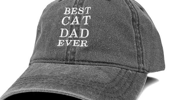 best cat dad hat