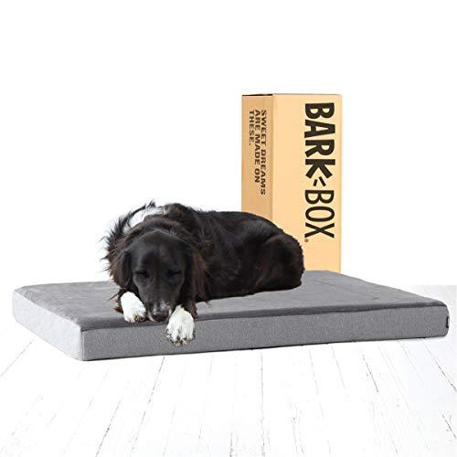 dog on Bark Box platform bed