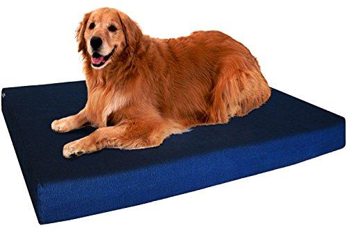 dog sitting on blue Dogbed4less orthopedic memory foam dog bed
