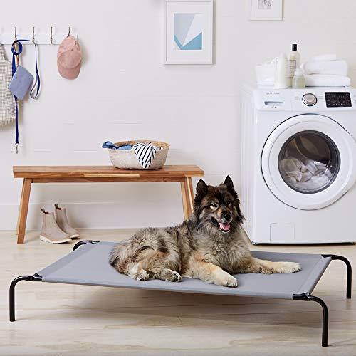 AmazonBasics elevated cheap dog bed
