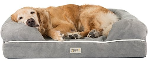 dog sacked out in Friends Forever memory foam bed
