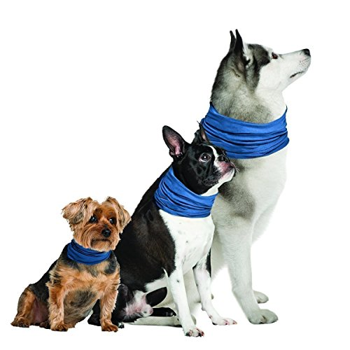 Novel Brands K9 Chill Dog cooling collar