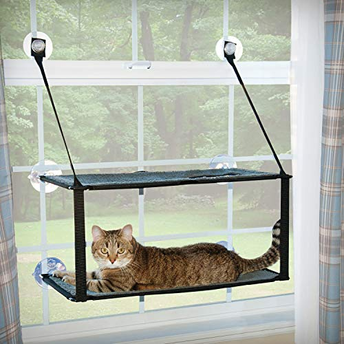 double level cat bed for windows