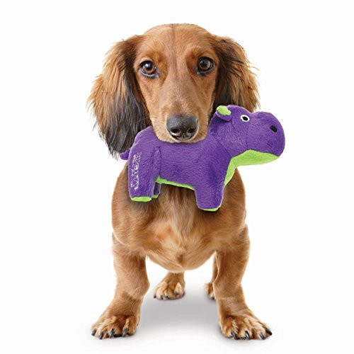 dog holding purple hippo plush toy