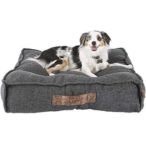 Harmony lounger bed with Aussie lying on top