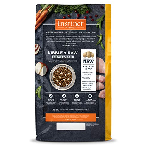 Chewy Nature's Variety Instinct raw and freeze-dried dog food