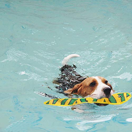 dog swimming with a Scenereal floating snake dog pool toy
