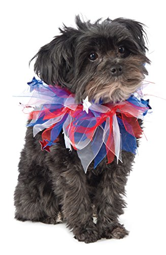 Amazon Rubie's fancy tulle collar Fourth of July outfit for dogs
