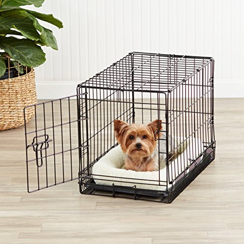 dog in AmazonBasics metal foldable crate for training