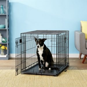 Midwest Life Stages metal dog crate for training