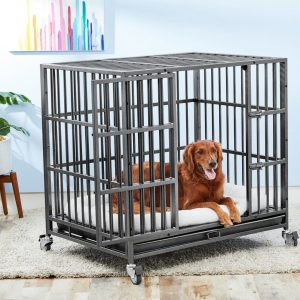 Chewy Frisco ultimate heavy duty best dog crates for training
