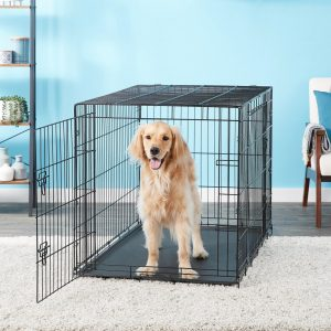 dog inside Carlson Pet Products collapsible wire crate