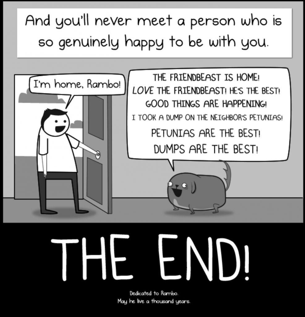 Paradox Dog The Oatmeal