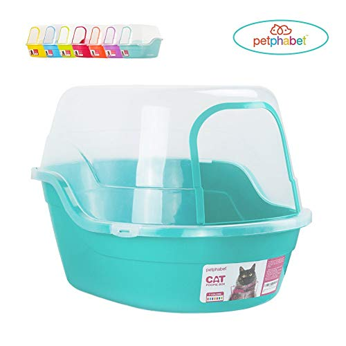 teal Petphabet covered litter box