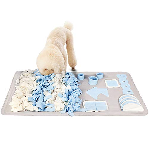 dog sniffing Stellaire Chern dog snuffle mat