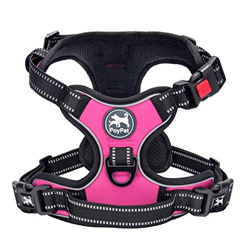 PoyPet pink harness