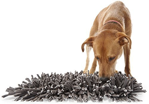 dog sniffing Paw5 dog snuffle mat