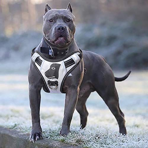 Babyltrl dog harness