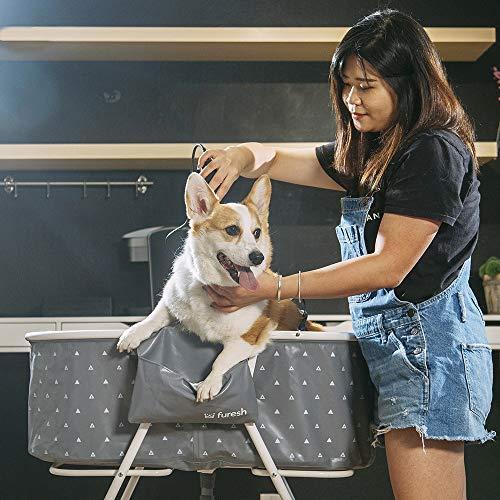 woman giving Corgi a bath in Furesh foldable dog bathtub