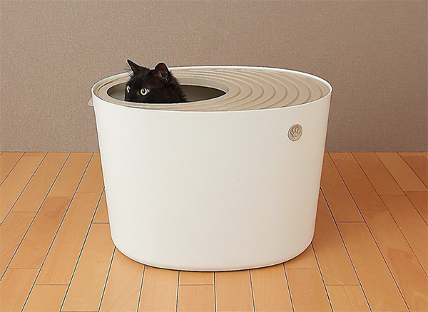 cat popping head out of Iris top-entry cat litter box